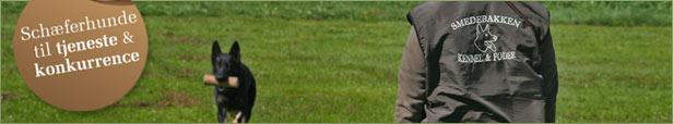 Smedebakken schæferhunde til tjeneste og konkurrence samt foder, udstyr og legetøj til alle dyr